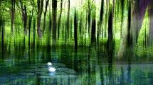mindfulness-green